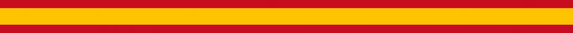 BANDER-ESPANA-VOX